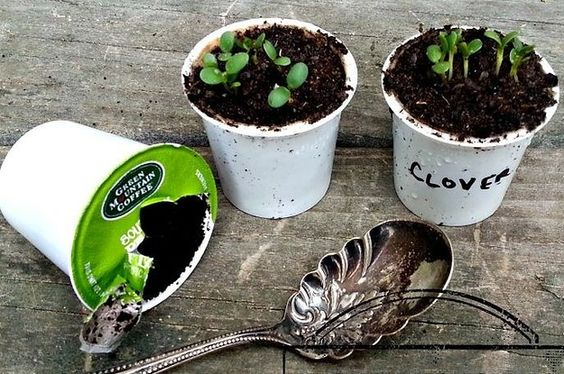 33 Genius Ways To Reuse Your K-Cups K Cups, Cups and Coffee Maker
