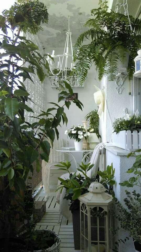 Schicker schäbiger französischer kleiner Patio-Garten ...