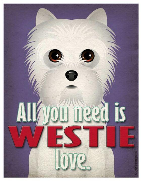 Westies love