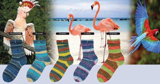 Fortissima Mexiko Vogelwelt Color | Martinas Bastel- & Hobbykiste