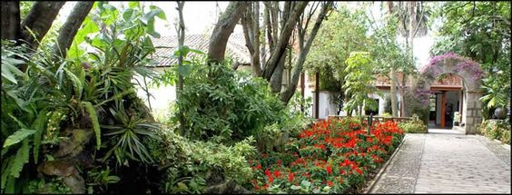 The Guayaquil botanical garden (jardin botanico) is a jungle of flowers in the city.