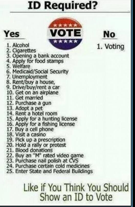 Amazingly, the signature legislation of Obama's administration (obamacare) requires identification to use. What can we do without ID...EXCEPT vote?