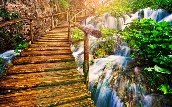 Beautiful Wooden Bridge On The Nature Wallpaper Full HD Wallpaper - gebrauchte küchen frankfurt