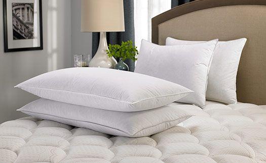 Hilton Feather Down Pillow Down Pillows Pillows Hotel Pillows
