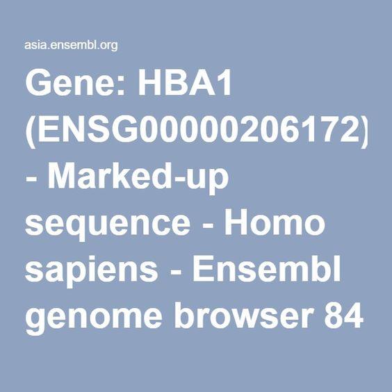 Gene: HBA1 (ENSG00000206172) - Marked-up sequence - Homo sapiens - Ensembl genome browser 84