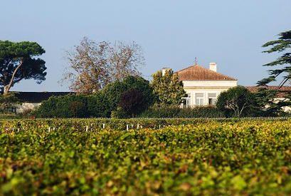 Chateau Mont-Gueydon 2010: A dica da semana que vale a pena e cabe no bolso! - Vinhos de hoje