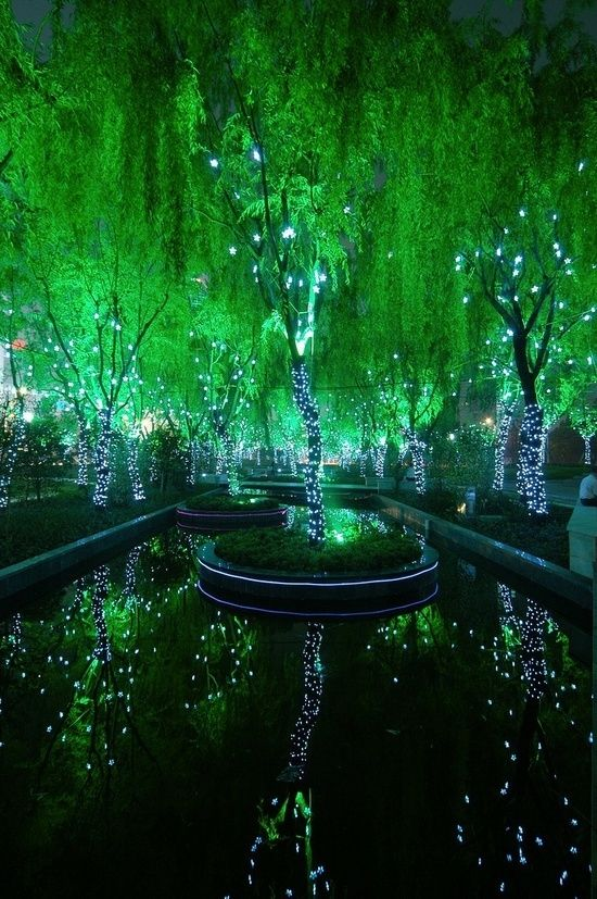 the green trees and lights show the green shining and bursting its colour softly
