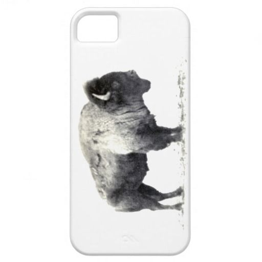 Historical Photograph of American Bison iPhone 5 Case