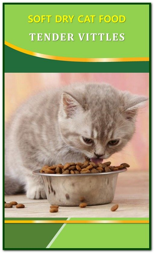 Soft Dry Cat Food Tender Vittles Cat Food Dry Cat Food Wet Cat Food