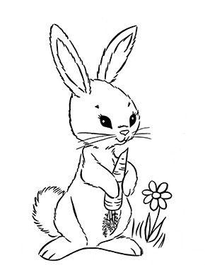 Ausmalbild Osterhase Isst Karotte Zum Ausmalen Ausmalbilder Malvorlagen Ostern Osterhase K Malvorlage Hase Malvorlagen Tiere Malvorlagen Ostern