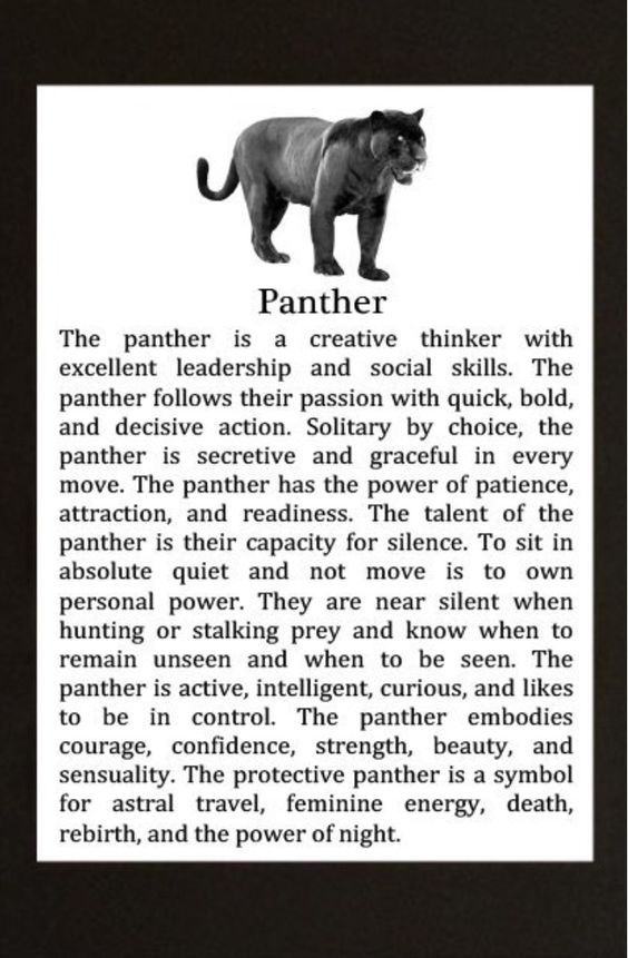 What Does The Movie Black Panther Symbolize