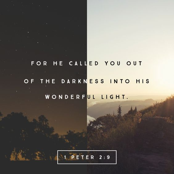 """""""But ye are a chosen generation, a royal priesthood, an holy nation, a peculiar people; that ye should shew forth the praises of him who hath called you out of darkness into his marvellous light:"""" 1 Peter 2:9 KJV http://bible.com/1/1pe.2.9.kjv"""