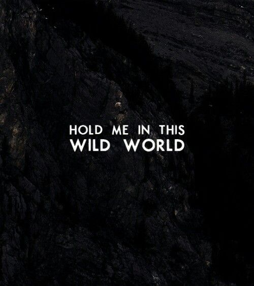 bastille wild world playlist