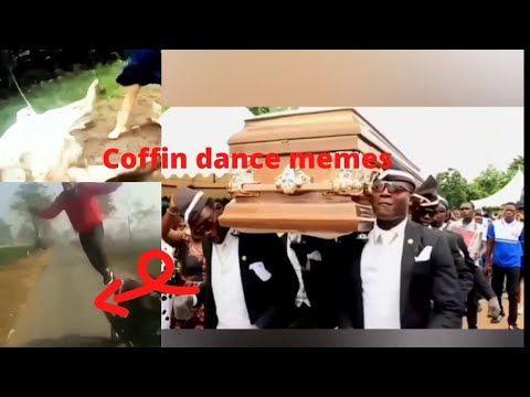 Funny Coffin Dance Memes 2020 Competition 2 Dance Memes Memes Dance