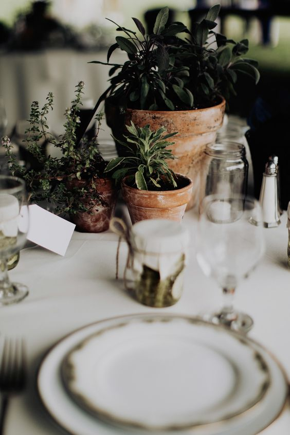 Potted plants added to the earthy + natural feel of this Ohio reception | Image by Addison Jones Photography