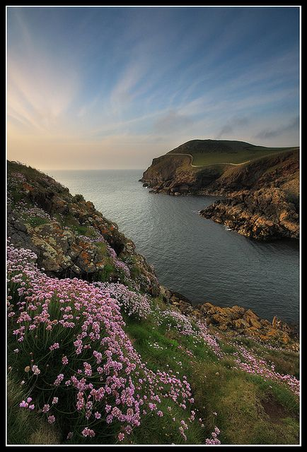 Port Quin by Tom Hill from flickr