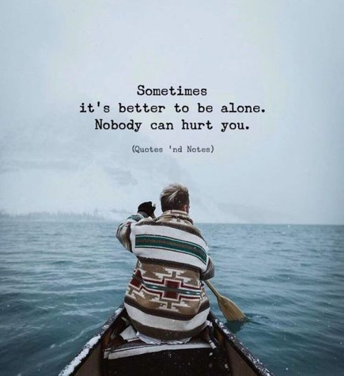 Best Life Quotes Sometimes It S Better To Be Alone Nobody Can Hurt You Via Http Ift Tt 2ey7hg4 Lifequ Happy Quotes Take A Break Quotes Words Quotes