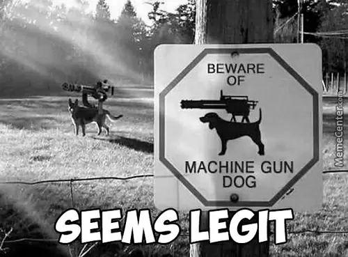 Machine gun them bowser