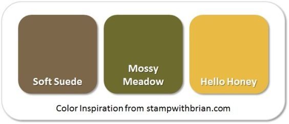 Stampin' Up! Color Inspiration: Soft Suede, Mossy Meadow, Hello Honey:
