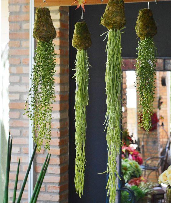 On instagram by novacasadecor  #homedesign #metsuke (o)  KOKEDAMAS  Uhul! Tão empolgados com essa novidade! Kokedamas são essas bolinhas de musgo que permitem que a planta seja pendurada em qualquer lugar! #novidades #novacasadecor