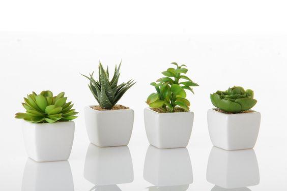 Conjunto de macetas y plantas decorativas en blanco for Casa de articulos para el hogar