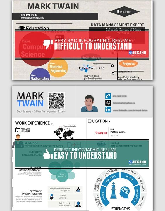 Online Creative Resume Design Services Infographic Resume - enterprise data management resume