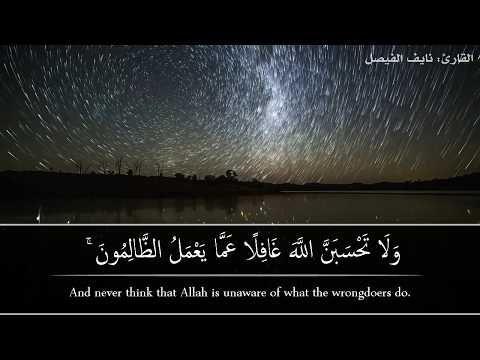 ولاتحسبن الله غافلا عما يعمل الظالمون القارئ نايف الفيصل Youtube Islam Facts Arabic Words Allah