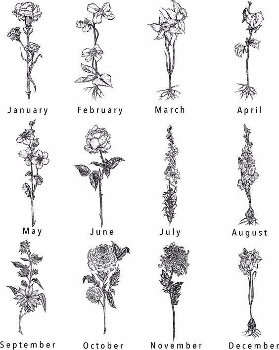 Birth Flower Tattoo Handgezeichnete Birth Flower Tattoos 1 Jan U2022u00a0carnation F Flowertat In 2020 Geburt Blume Tatowierungen Chrysantheme Tattoo Nelke Tattoo