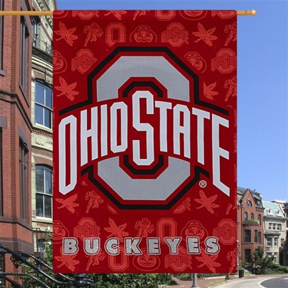 """Ohio State Buckeyes 29"""" x 43"""" Glitter Suede House Vertical Flag"""