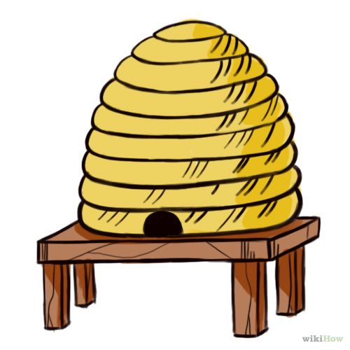 how to draw a realistic beehive