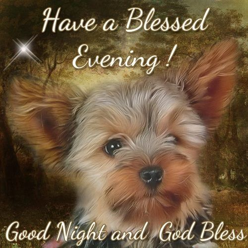 Good Night Bless Pictures Photos For – Daily Inspiration Quotes