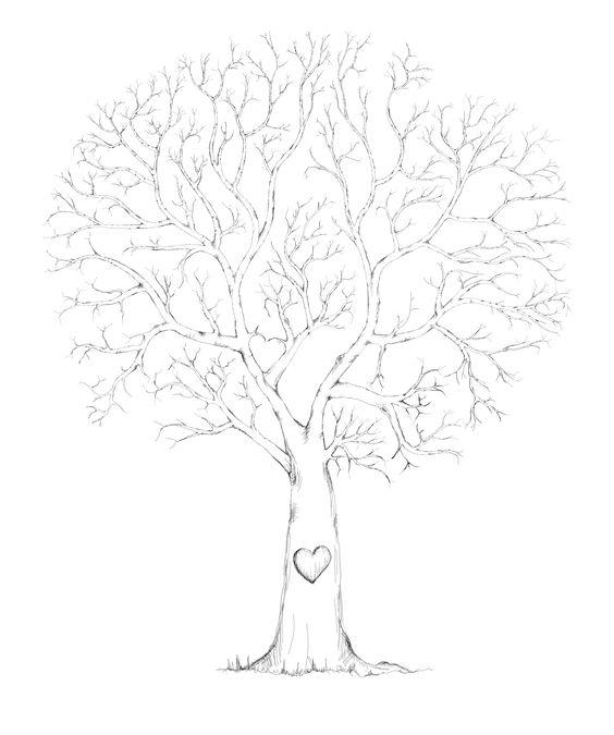 Boom getekend op de tekentablet. Gemaakt voor gastenboeken, voor bijvoorbeeld een bruiloft of verjaardag, namen kunnen eronder en de boom kan versierd worden met groene vingerafdruk blaadjes. Voor informatie: info@letterlijn.nl