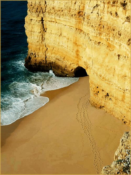 Treaces in the sand, Algarve | Portugal(by ♦ peter-g ♦)
