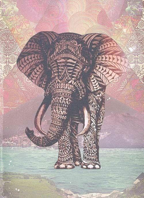 elephant designs tumblr - photo #15