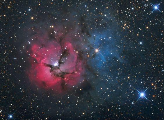Nebulosa Trífida (M20) - Gerald Rhemann - 2010