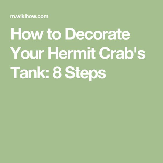 How to Decorate Your Hermit Crab's Tank: 8 Steps