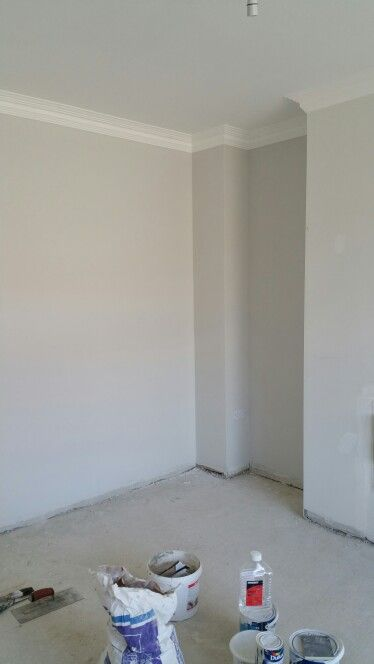 Mid cinder from dulux perfect neutral paint not to warm for Warm neutral grey paint