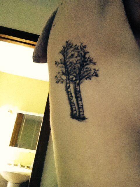 My new birch tree tattoo for muskoka #muskoka #tattoo #birchtree