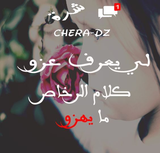 Pin By Dgreiedoumaymene On كلام يجرح ويداوي Strong Women Arabic Quotes Hijabi Girl
