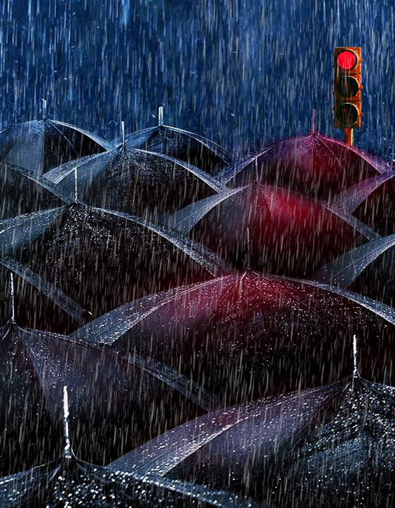 Black Umbrellas by Emin Zeynalov on 500px