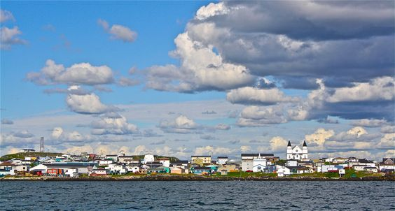 Información sobre toponimia y presencia vasca en Terranova