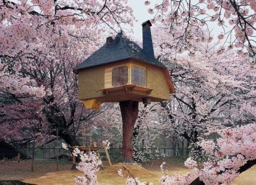 Cherry Blossoms Treehouse!!!!!! I MUST HAVE!!!!!!!