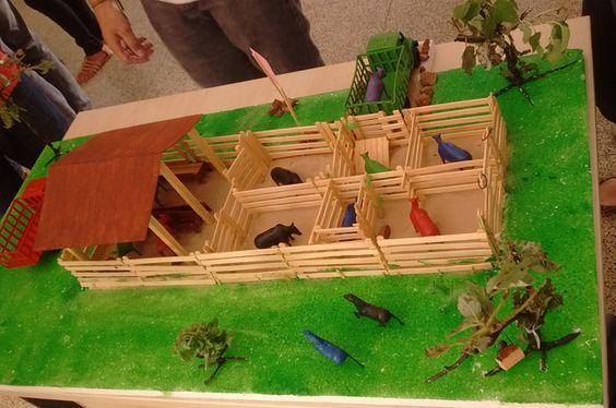 Alunos de Cocal expõem maquetes de instalações agrícolas - IFPI