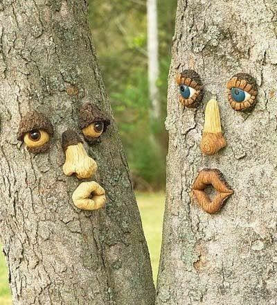 Pin By Tracy Brinkley On Trees Tree