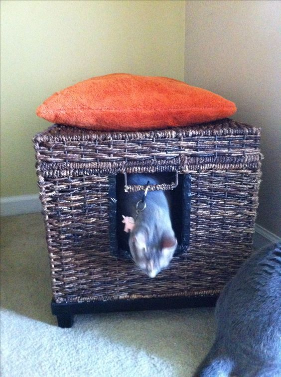 How To Weave A Cat Basket : Diy litter box basket weave trunk from target used