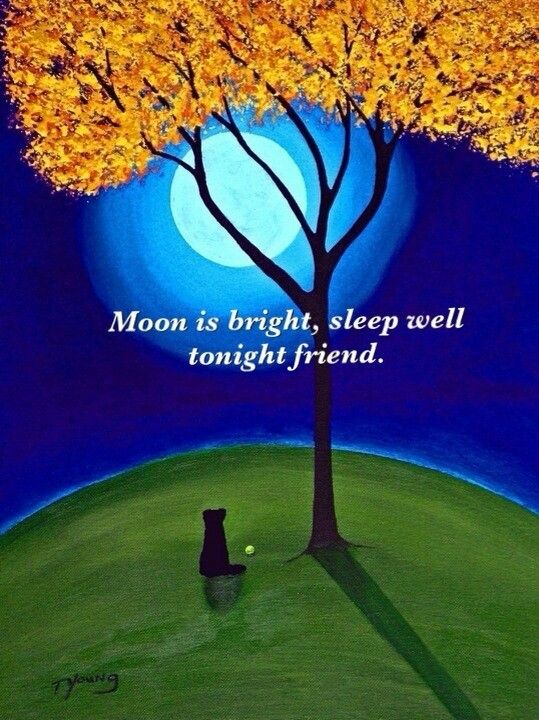 Goodnight friend...<img src=