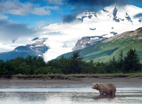 Driving along Alaska's highways is an adventurous way to explore the wilderness of America's Final Frontier. But it can also get expensive. Save money on your road trip through Alaska with these budget-savvy tips.