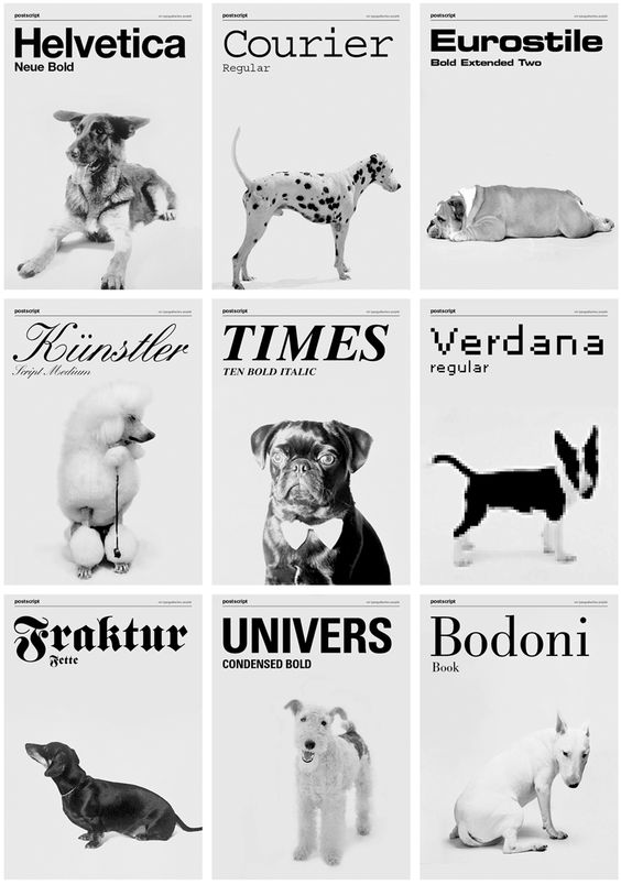 if your dog were a font, which would (s)he be? Studio grafisches buro sets out to discover, comparing the various characteristics of each pet in the same way graphic designers have to think about font choice