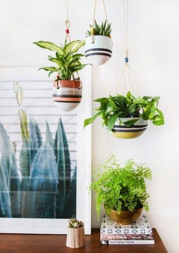 やはりおしゃれにグリーンを飾るとなるとおすすめしたいのが、吊るす方法です。吊るす器具にも様々なものがあるので、お部屋に合わせて選んでみましょう。