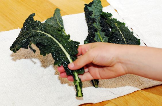 How to Prepare, Store and Serve Kale by  elenaspantry #Kale #How_to #elenaspantry